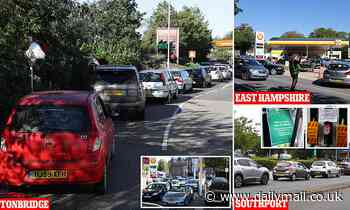 Frenzied buying causes flare ups at gridlocked filling stations as motorists ignore Government pleas