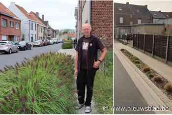 """Een beetje groen is fijn maar de planten in deze straat nemen wel erg veel ruimte in: """"Voetgangers kunnen nog amper door"""""""