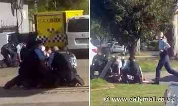 Wild brawl erupts between Alameddine family & police outside a Coles petrol station in Sydney's west