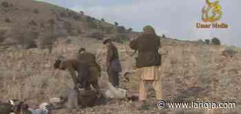 Los talibanes recuperan los castigos severos con ejecuciones y amputaciones - La Rioja