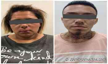 Cateo en 4 domicilios de Guadalupe y Cadereyta deja dos detenidos y decomiso de droga - Dominio Medios