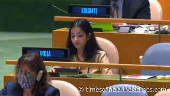 Pakistan is 'arsonist' disguising itself as 'fire-fighter': India's reply at UNGA