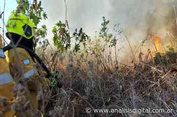 Incendios en las islas: el intendente de Rosario respondió al fiscal de Estado entrerriano | Análisis - Análisis Digital