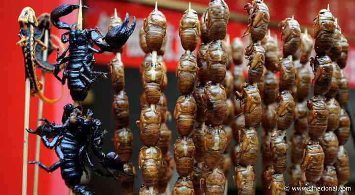 Los insectos, una nueva fuente de proteínas seguras, saludables ysostenibles