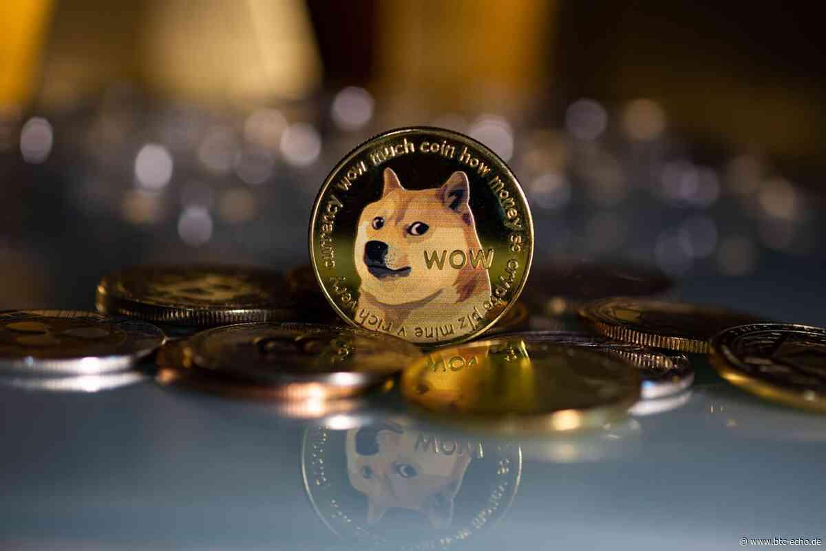 Dogecoin (DOGE): Support von AMC und Elon Musk - BTC-ECHO