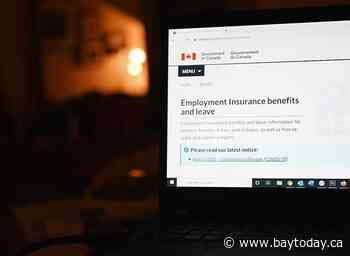 There are new rules about employment insurance. Here's what you need to know.