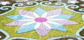 Los alfombristas do Corpus Christi de Ponteareas realizarán la alfombra de San Froilán - leonoticias.com
