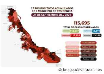 COVID-19: 115 mil 695 casos en Veracruz; 13 mil 290 defunciones - Imagen de Veracruz