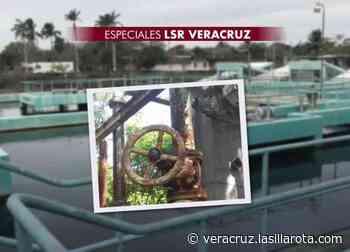 Grupo MAS: 5 años de incumplimiento y fallas en Veracruz - La Silla Rota