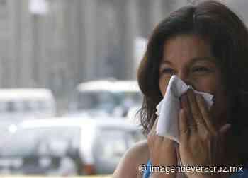 Sin registro de muertes por influenza en Veracruz: Salud - Imagen de Veracruz