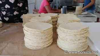 Anuncian aumento del precio de la tortilla en Isla Mujeres - PorEsto