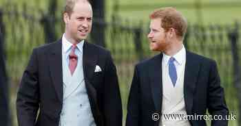 William and Harry set to reunite at prize-giving ceremony for Princess Diana charity