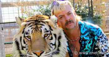 Tiger King 2 release date: Netflix confirms when you'll see Joe Exotic again     - CNET
