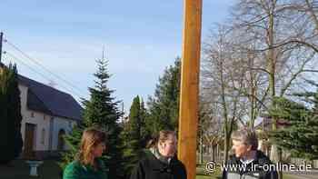 Naturschutz in Spremberg: Wie eine Schwalbenschützerin Tieren hilft und Straftaten verhindert - Lausitzer Rundschau