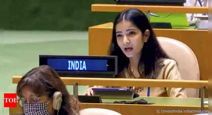 Pakistan an arsonist in guise of a fire-fighter: Indian diplomat