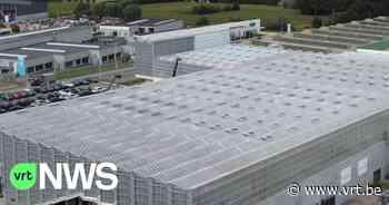 BEKIJK - Grootste dakserre van Europa geopend in Roeselare - VRT NWS