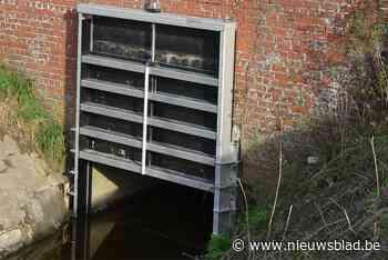 Nieuw overstromingsgebied moet voorkomen dat Collievijverbee... (Roeselare) - Het Nieuwsblad