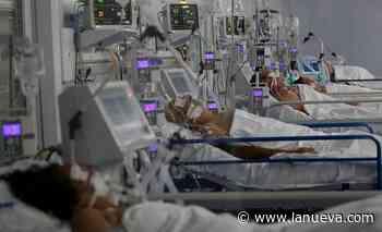 Otros 21 muertos y 993 nuevos contagios de coronavirus en Argentina - La Nueva