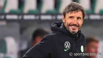 Die Tricks von Mark van Bommel für Harmonie beim VfL Wolfsburg - SportBILD