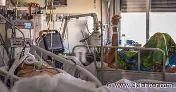 Otros 21 muertos y 993 nuevos contagios de coronavirus en Argentina - elDiarioAR.com