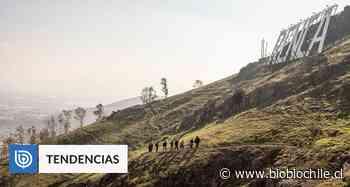 Exposición Archipiélago Invisible rescata riqueza y diversidad de Santiago y sus cerros isla - BioBioChile