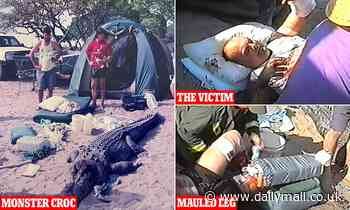 Australia crocodile attack: 4.2m beast dragged man out of his tent before grandmother saved him