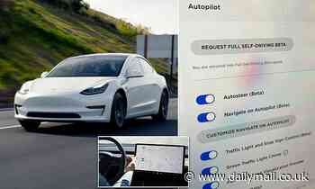 Tesla owners choose 'full self-driving' software meaning thousands can soon hit the road