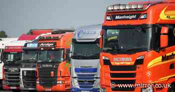 Letters sent to a million HGV driving licence holders in desperate bid to solve crisis