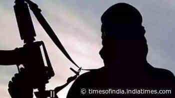 Terror crackdown underway at J&K's Bandipora