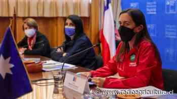 Villarrica: Ministra Undurraga detalla medidas para potenciar trabajo con las comunidades indígenas - Radio Agricultura