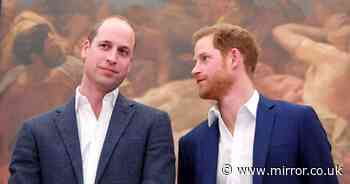 Prince William and Prince Harry loved going to McDonalds - but it wasn't for the food