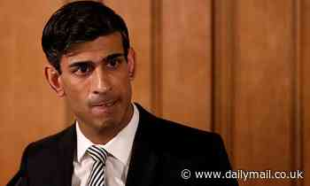 Rishi Sunak vetoes Government move to introduce new tax on junk food - Daily Mail