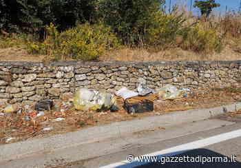 """Collecchio, una provinciale di... rifiuti: """"E' così da almeno tre settimane"""" - Foto - Gazzetta di Parma"""