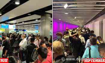 Heathrow bedlam blamed on 'nightmare' new rota 'forcing border staff to work 12-hour shifts'