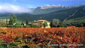 Un rioja en la 'Bolsa' del vino - Granada Hoy