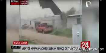 Tingo María: vientos huracanados causan destrozos - Panamericana Televisión