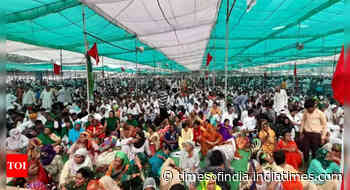 Singhu swells for today's Bharat bandh