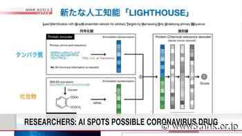 Researchers: AI spots possible coronavirus drug - NHK WORLD