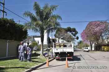 Comenzaron los trabajos de iluminación en Guadalupe - Sin Mordaza