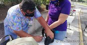 Guadalupe. Arranca Jornada Nacional de Vacunación Antirrábica - Telediario Monterrey