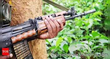 Deaths in Naxal attacks down by 21%: Shah at CMs' meeting