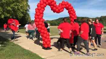 Danville-Pittsylvania County Heart Walk raises thousands - WDBJ7