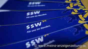 Bundestagswahl 2021: Sonstige Parteien im Überblick – SSW feiert Einzug ins Parlament