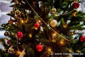 Nog maar september, en Natalina uit Nieuwerkerken heeft haar kersthuis al klaar - Het Nieuwsblad
