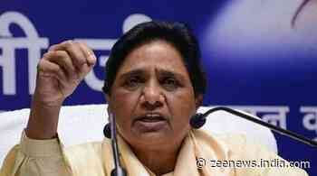 Yogi govt hiked cane support price ahead of polls for selfish motives, says BSP chief Mayawati