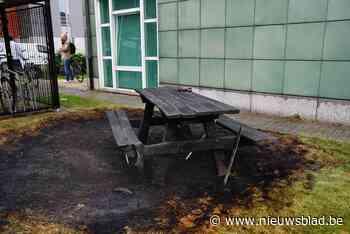 Picknicktafel in brand gestoken in Bloemekenswijk