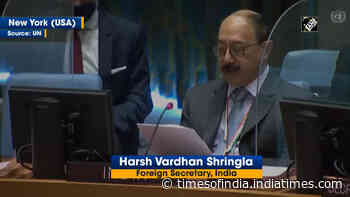 India committed to goal of nuclear weapons free world: Harsh V Shringla at UNSC