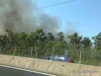 Incêndio atinge área vegetativa perto da Reduc - G1