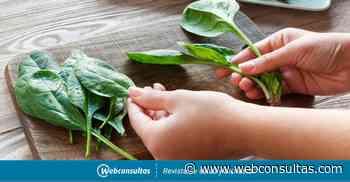 Comer espinacas a menudo podría proteger contra el cáncer de colon - Webconsultas Healthcare