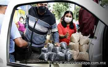 Regresan productores de Altotonga a ofertar frijol, en Xalapa - Diario de Xalapa